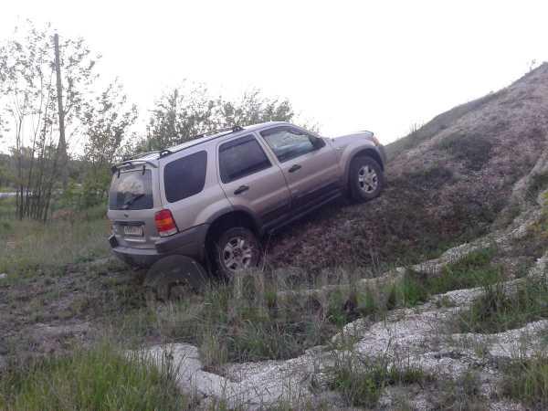 Ford Escape, 2000 год, 330 000 руб.