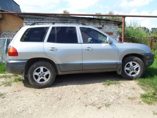 Hyundai Santa Fe, 2002 год, 315 000 руб.