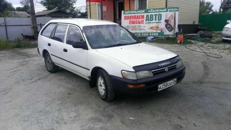 Toyota Corolla, 1993 год, 117 000 руб.