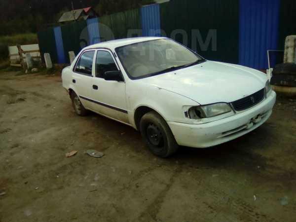 Toyota Corolla, 2000 год, 50 000 руб.