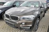 BMW X6. КОРИЧНЕВЫЙ ПИРИТ, МЕТАЛЛИК (X13)