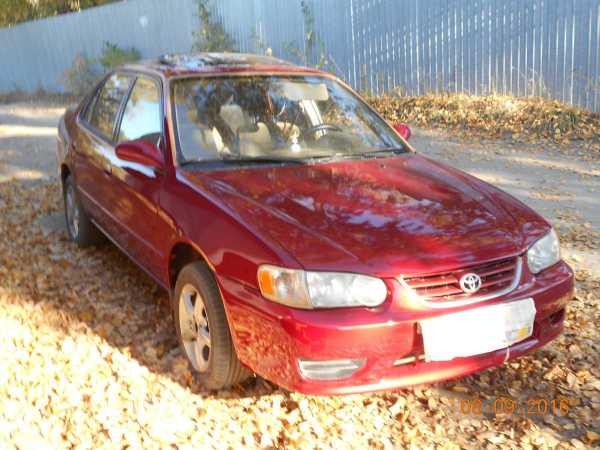 Toyota Corolla, 2002 год, 287 000 руб.