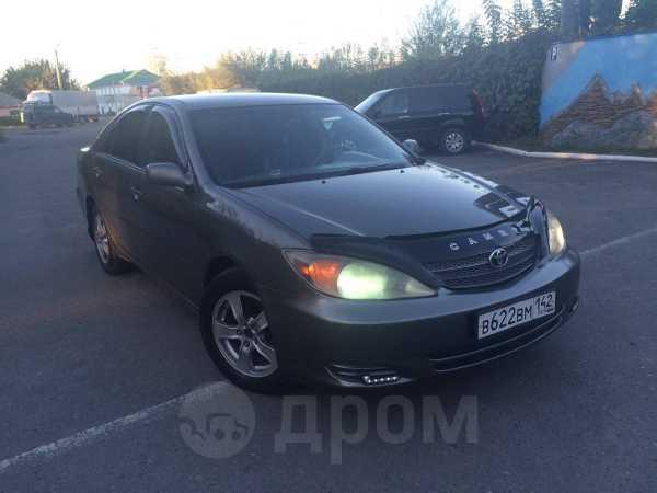 Toyota Camry, 2002 год, 365 000 руб.