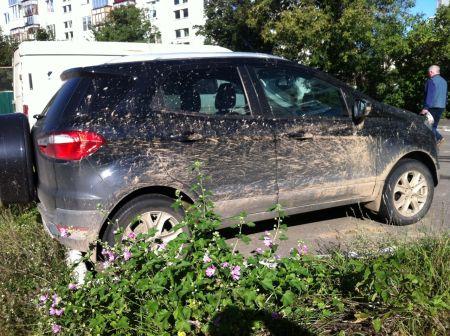 Ford EcoSport 2014 - отзыв владельца