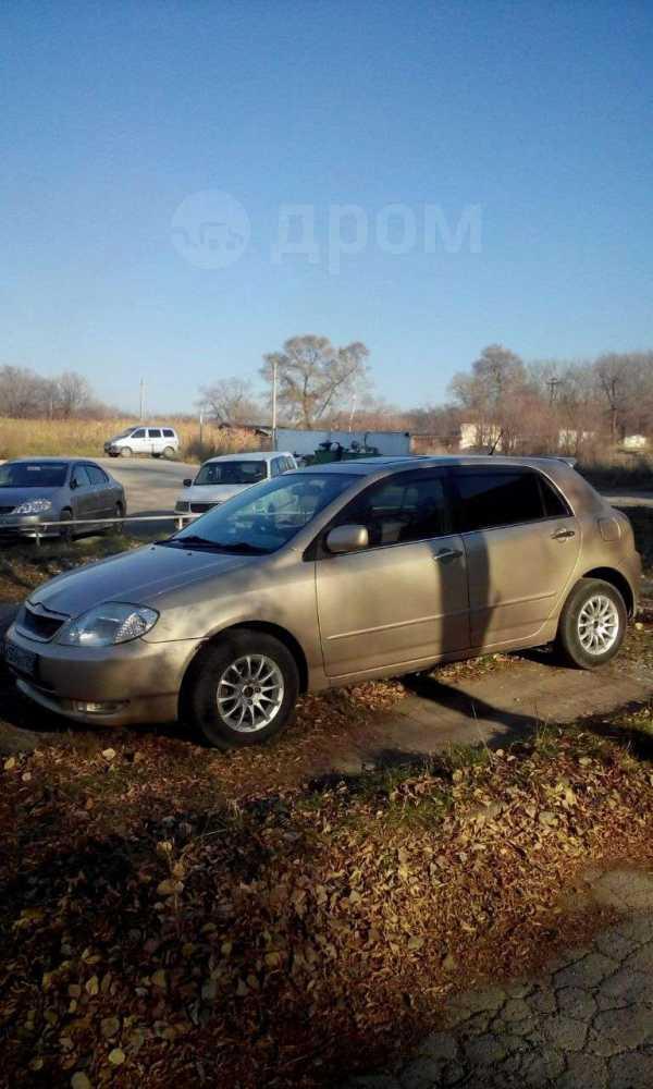 Toyota Allex, 2001 год, 305 000 руб.
