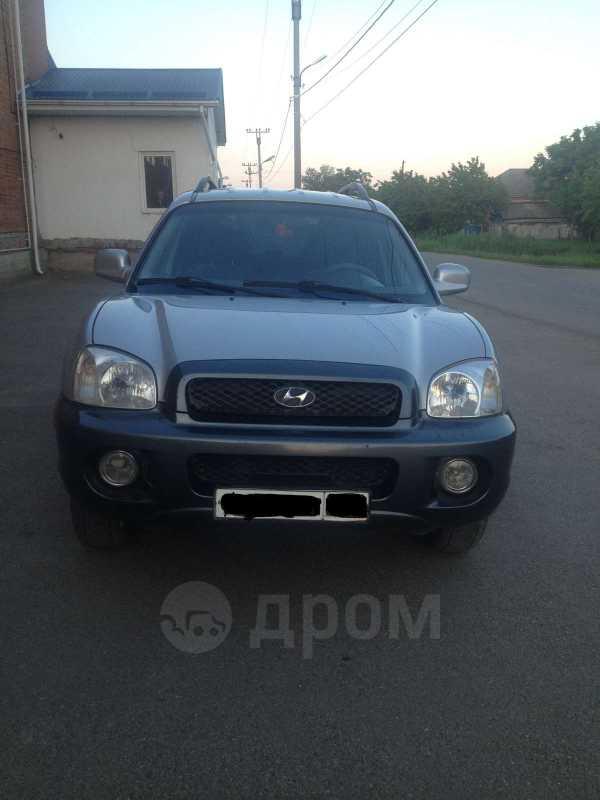 Hyundai Santa Fe, 2001 год, 270 000 руб.