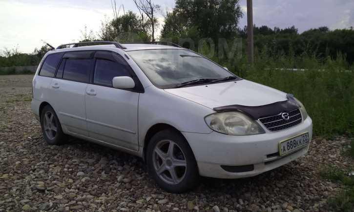 Toyota Corolla Fielder, 2001 год, 300 000 руб.