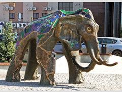 У Слона
