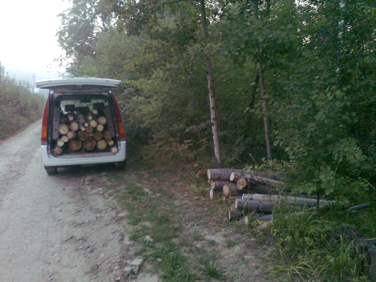 В лес по дрова