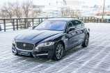 Jaguar XF. BLACK BERRY_ЧЕРНО-ФИОЛЕТОВЫЙ