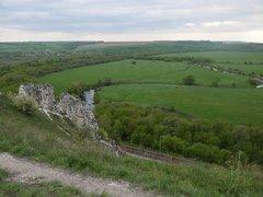 Тихая Сосна (Река)