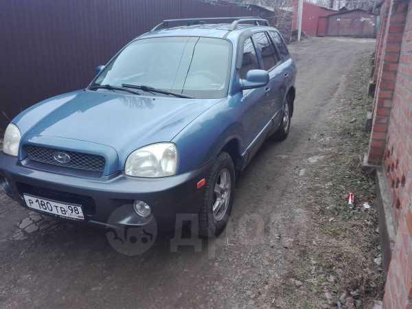 Hyundai Santa Fe, 2000 год, 335 000 руб.