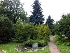 ботанический сад (бывший Императорский Ботанический сад)