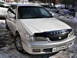 Новосибирск Корона Премио 2001