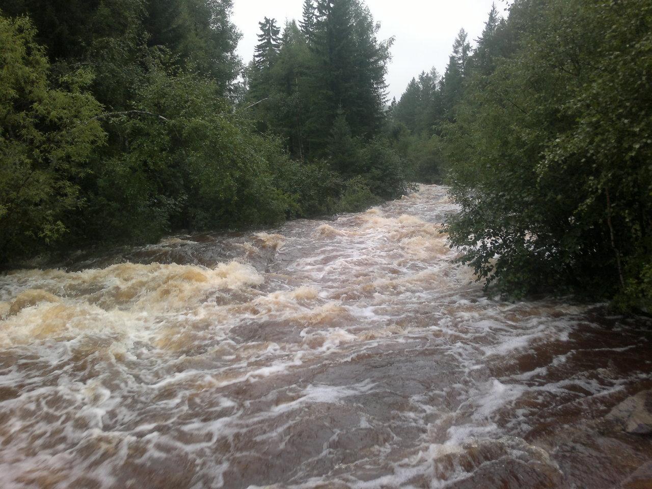 Последнее дождливое лето. Река по дороге на участок.