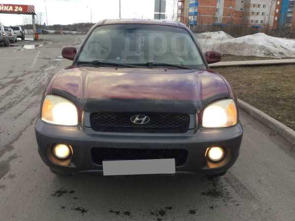 Hyundai Santa Fe, 2000 год, 320 000 руб.