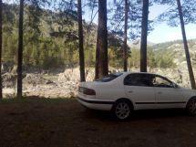 Toyota Corona 1994 отзыв владельца | Дата публикации: 23.08.2016