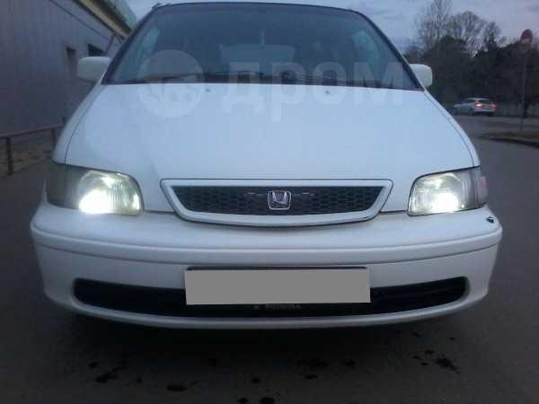 Honda Odyssey, 1999 год, 242 000 руб.