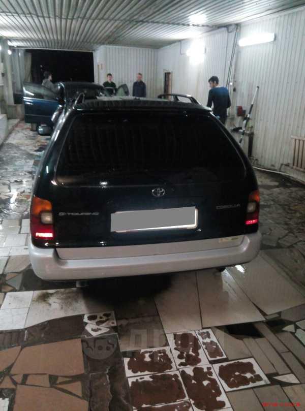 Toyota Corolla, 1996 год, 180 000 руб.