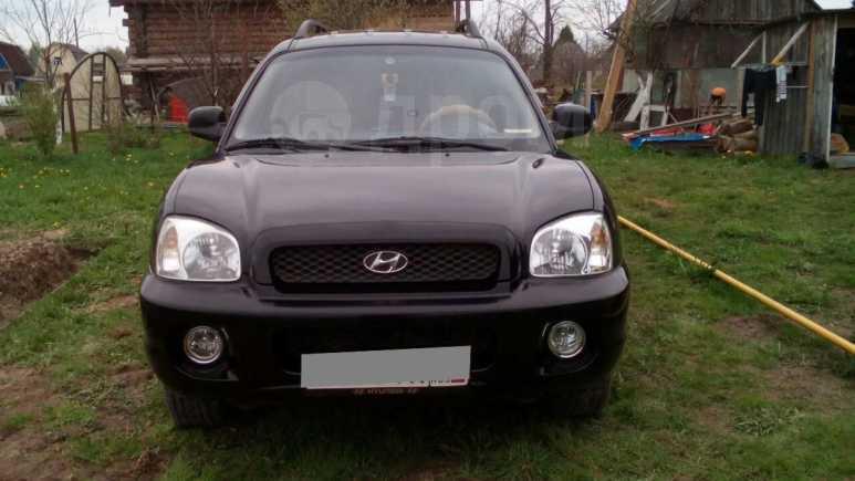 Hyundai Santa Fe Classic, 2003 год, 355 000 руб.