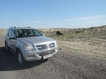 Ford Explorer, 2008