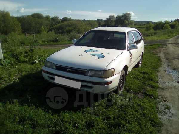 Toyota Corolla, 1992 год, 50 000 руб.