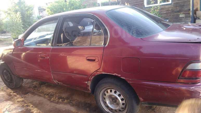 Toyota Corolla, 1993 год, 18 000 руб.