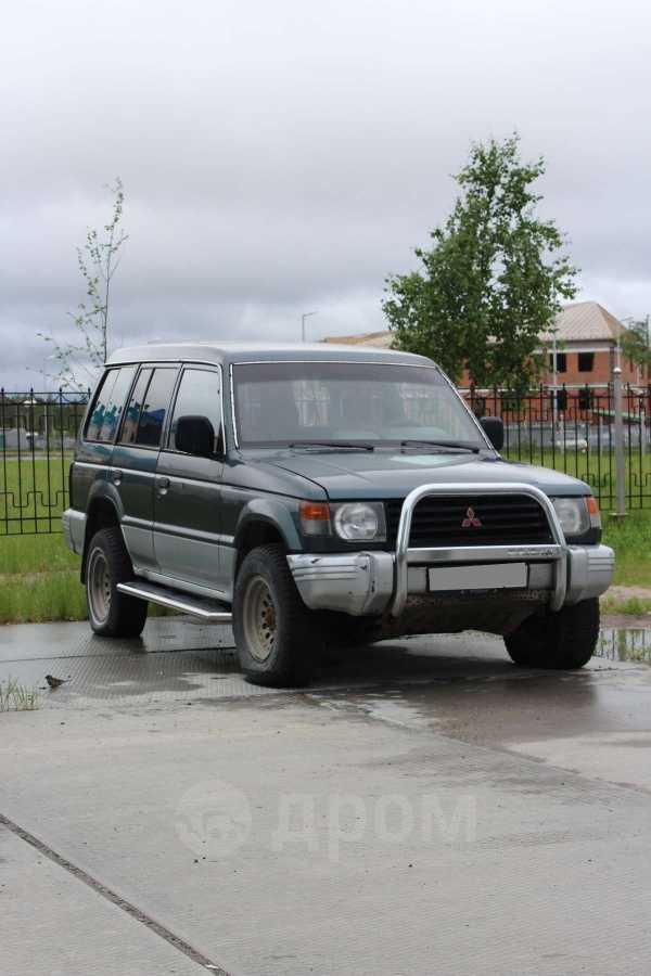 Mitsubishi Pajero, 1993 год, 200 000 руб.