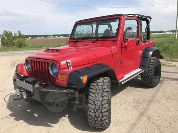 Jeep Wrangler, 1994 год, 599 000 руб.