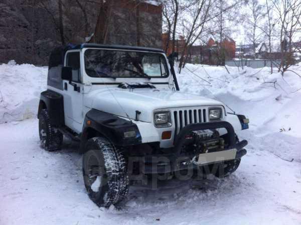 Jeep Wrangler, 1994 год, 550 000 руб.