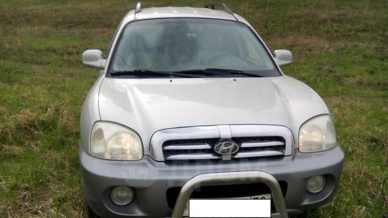Hyundai Santa Fe, 2004 год, 380 000 руб.