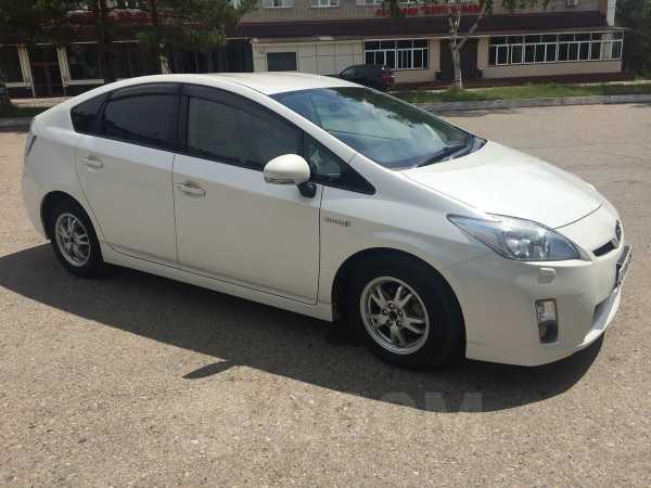Toyota Prius, 2010 год, 749 999 руб.