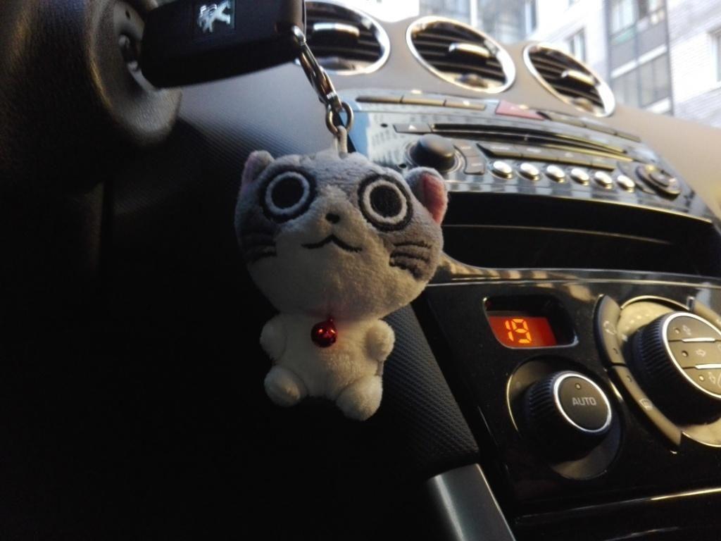 Вот он, славный котик из Китая.