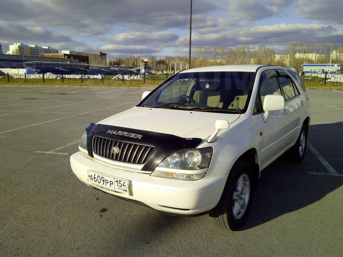 Авто шпатлевки в новосибирске мастика вента v цена