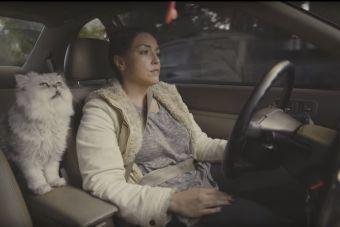 Ролик о девушке у которой закончился бензин в машине