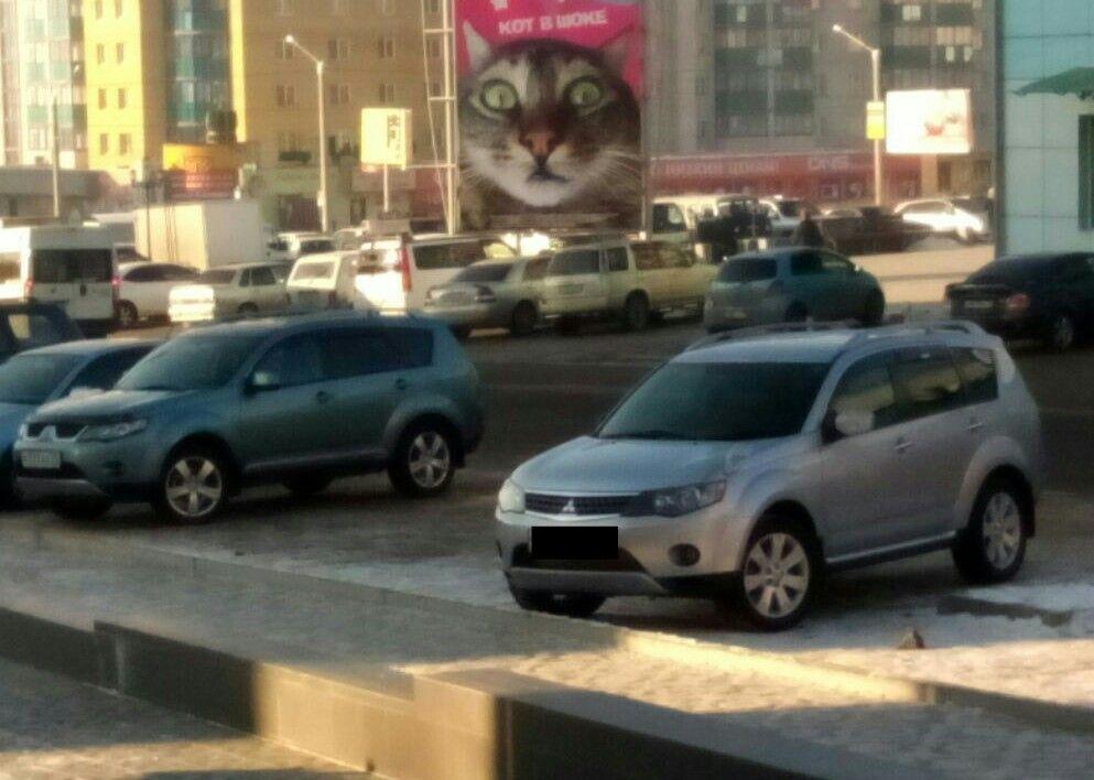 Кот в ах-е от Аутлендеров)