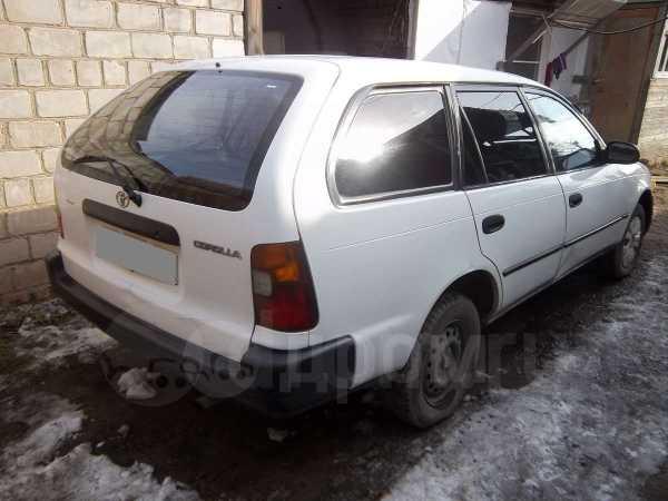Toyota Corolla, 1996 год, 115 000 руб.