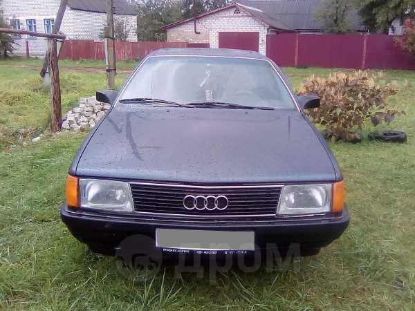 Audi 100, 1989 год, 115 000 руб.