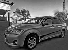 Белогорск Corolla Fielder