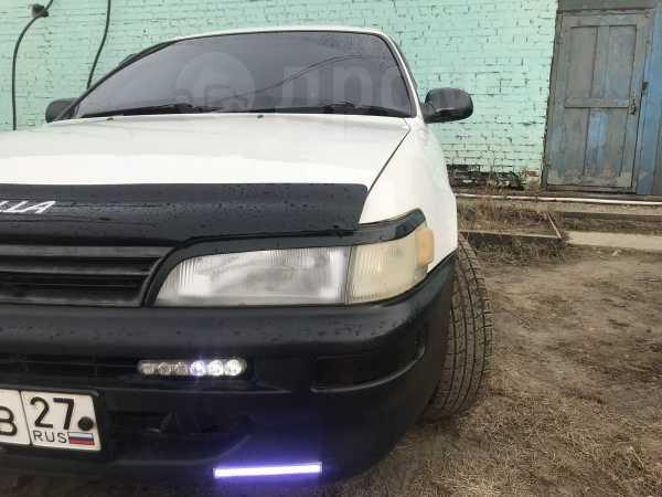 Toyota Corolla, 1997 год, 178 000 руб.