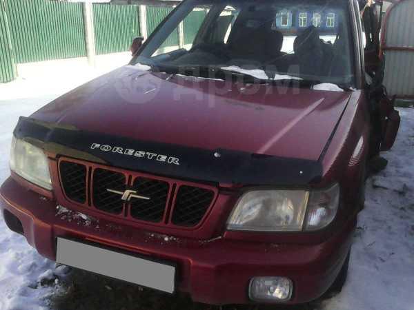 Subaru Forester, 2001 год, 135 000 руб.