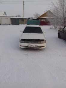 Славгород Виста 1993