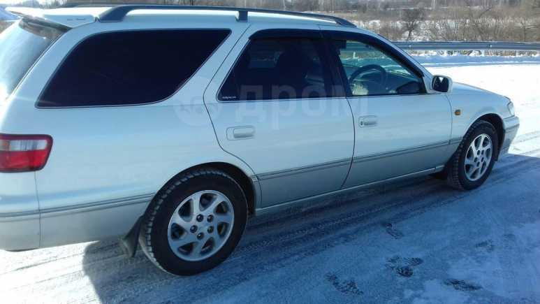 Toyota Camry Gracia, 1998 год, 265 000 руб.