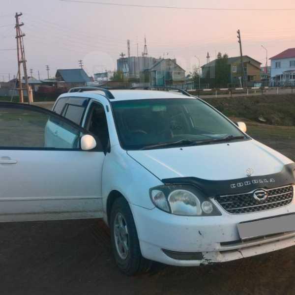 Toyota Corolla Fielder, 2001 год, 265 000 руб.