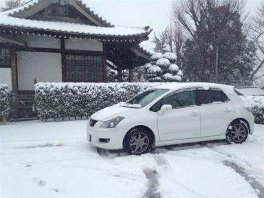 Toyota Blade 2007 отзыв автора | Дата публикации 24.06.2012.