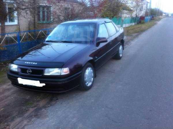 Opel Vectra, 1995 год, 160 000 руб.