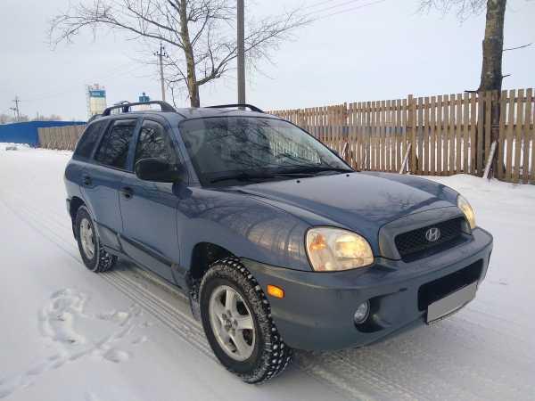 Hyundai Santa Fe, 2000 год, 260 000 руб.