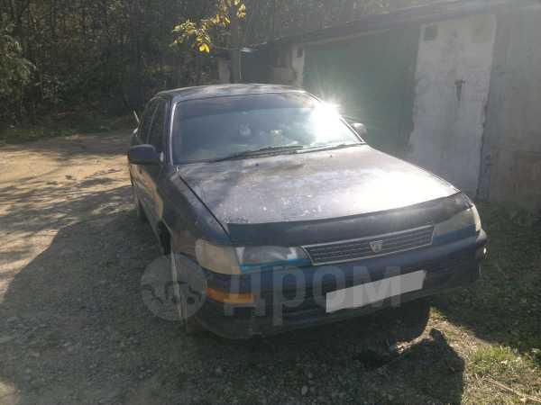 Toyota Corolla, 1995 год, 35 000 руб.