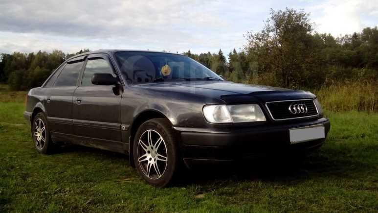 Audi 100, 1993 год, 220 000 руб.