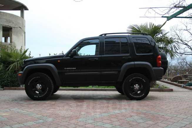 Jeep Cherokee, 2002 год, 250 000 руб.